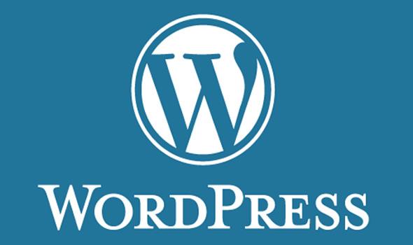 wordpress6